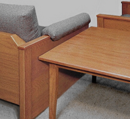 practical heavy-duty furniture for handicapped