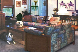 Practical Southwestern Sofas, your choice of fabric