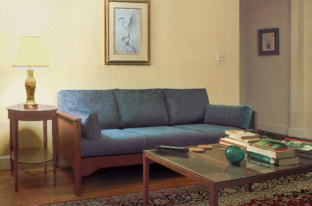 Pet practical, compact contemporary sofa